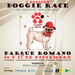 doggierace-1080x1080